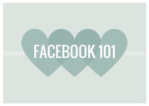 facebook 101 sale