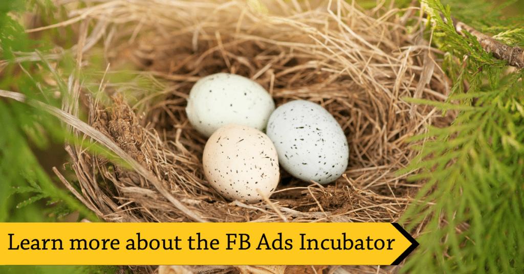 incubator-learn-more
